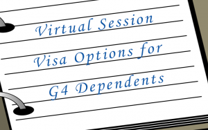 Virtual Visa Options