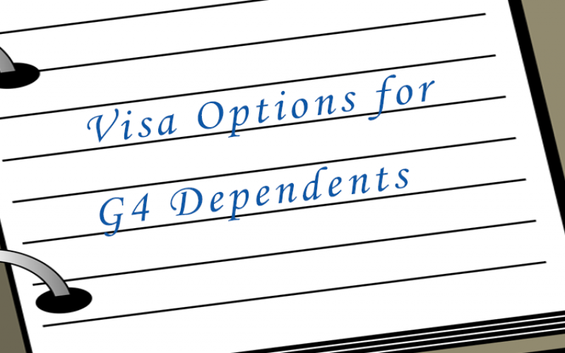 Visa Options G4 holders